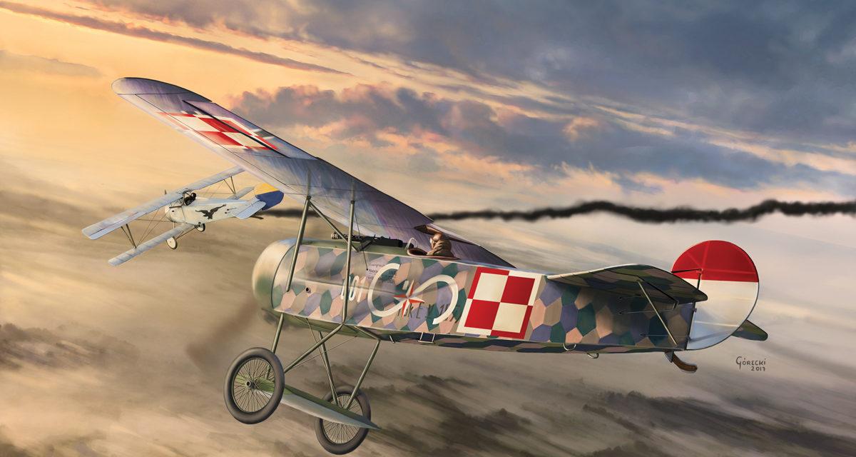 Pierwszy Polski Fokker E.V – Tajemnice Malowania